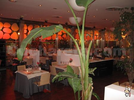 Restaurante Fábula Green Canal Golf - Recomendado para tu Cena de Navidad en Madrid